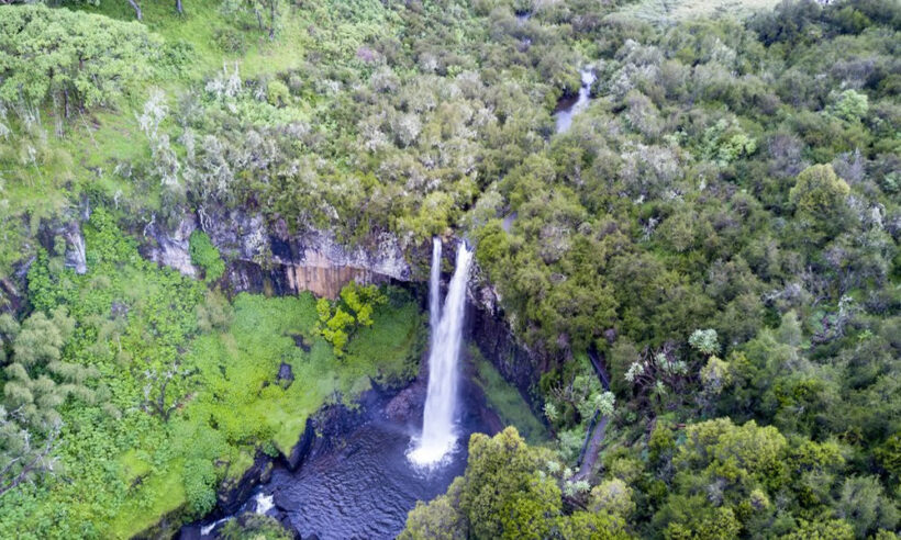Aberdares National Park Safari 2