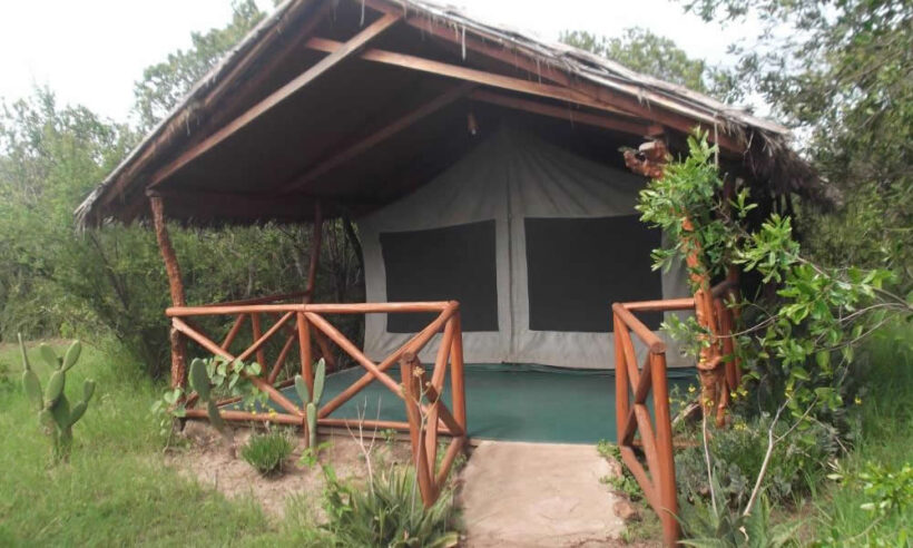 Crocodile Camp Masai Mara 1